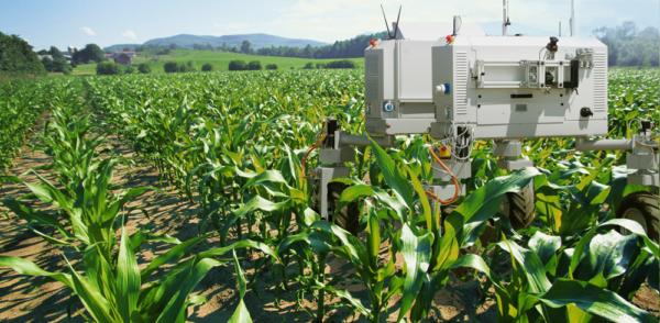 iot-agriculture-farming-e1470365237744